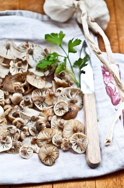 Funghi chiodini sott'olio