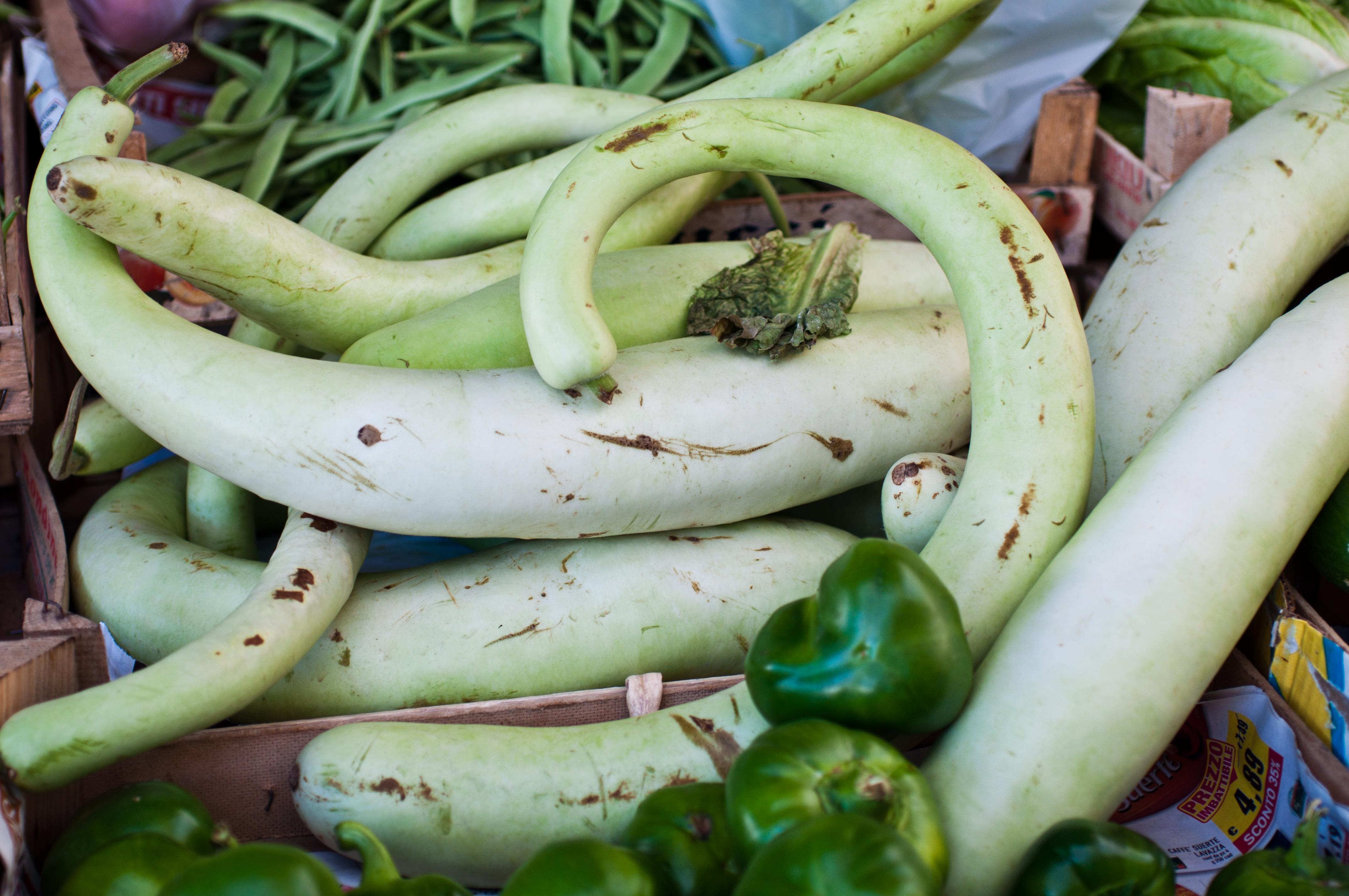 Calabria - Zucca lunga